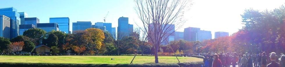 <2020年元日>令和初のお正月を迎えて新年ご挨拶(新たなる日本の未来に向けて)_c0119160_12341704.jpg
