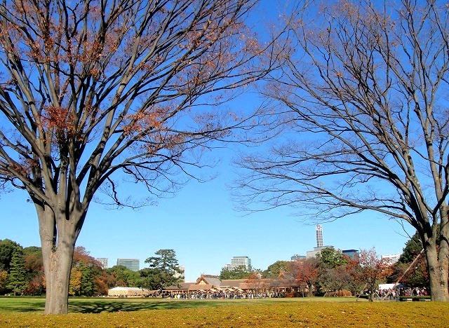 <2020年元日>令和初のお正月を迎えて新年ご挨拶(新たなる日本の未来に向けて)_c0119160_18084760.jpg