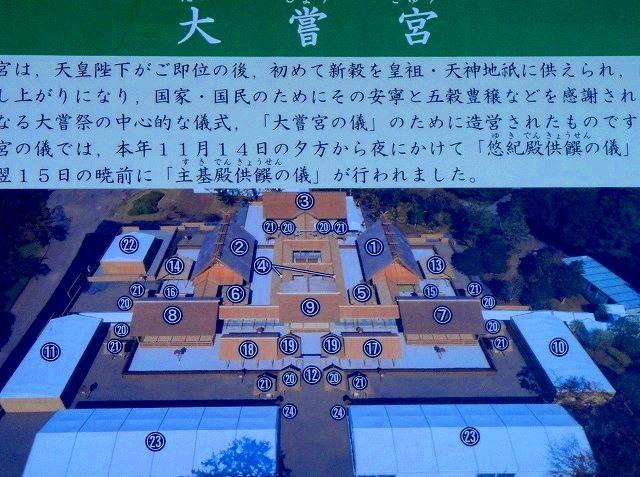<2020年元日>令和初のお正月を迎えて新年ご挨拶(新たなる日本の未来に向けて)_c0119160_18275353.jpg