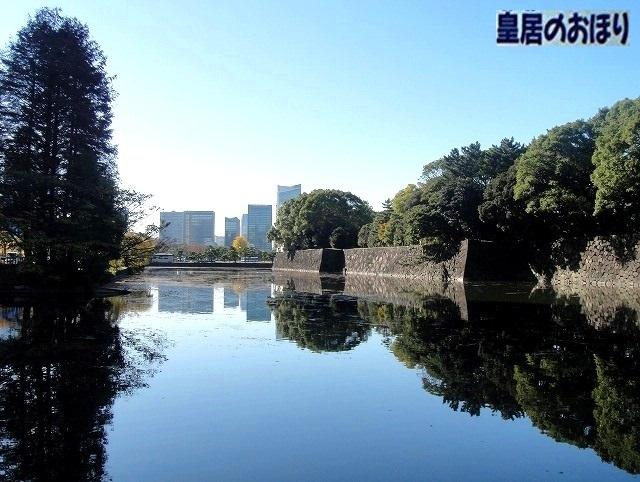 <2020年元日>令和初のお正月を迎えて新年ご挨拶(新たなる日本の未来に向けて)_c0119160_18333102.jpg