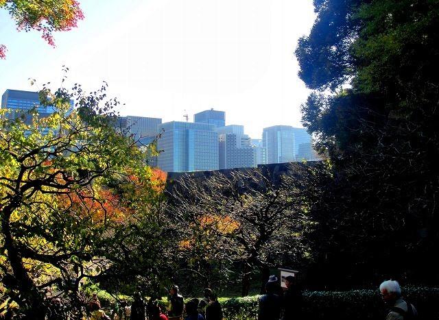 <2020年元日>令和初のお正月を迎えて新年ご挨拶(新たなる日本の未来に向けて)_c0119160_19154836.jpg