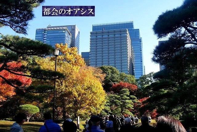 <2020年元日>令和初のお正月を迎えて新年ご挨拶(新たなる日本の未来に向けて)_c0119160_19184741.jpg