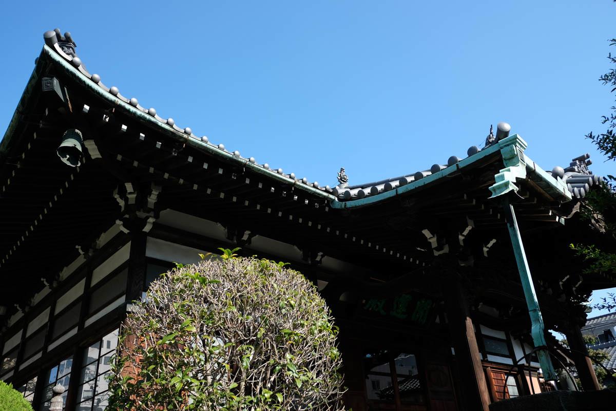 緑がいっぱい台東区~1_c0084666_08272157.jpg
