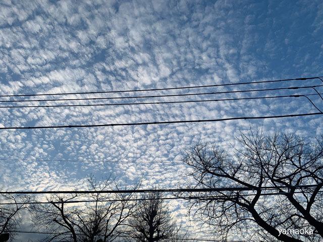 歳晩の不思議な雲、、、_f0071480_17105047.jpg