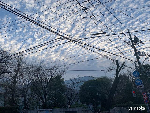 歳晩の不思議な雲、、、_f0071480_17105689.jpg