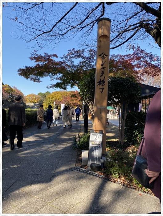 愛知県(名古屋周辺)でのお出かけ その6 毎回定番のコース名古屋城 (11月29日)_b0175688_00003656.jpg