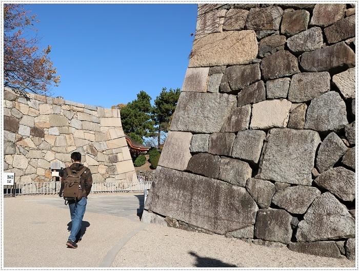 愛知県(名古屋周辺)でのお出かけ その6 毎回定番のコース名古屋城 (11月29日)_b0175688_00014662.jpg