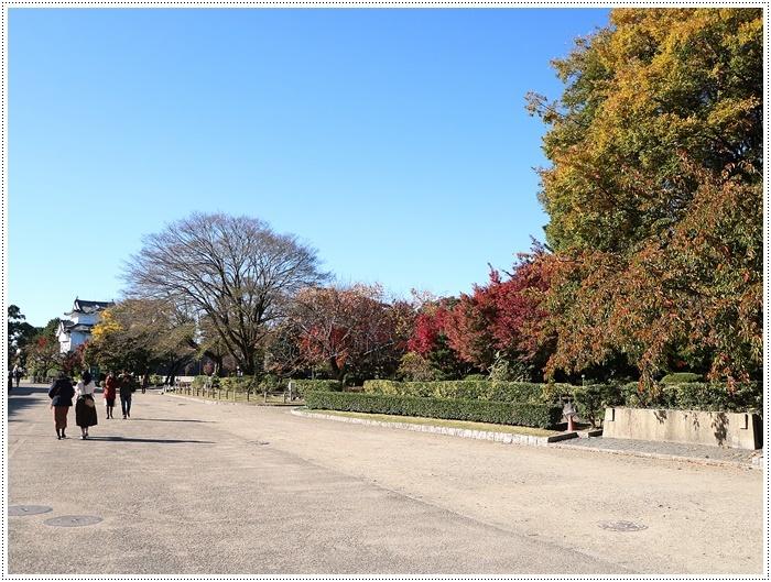 愛知県(名古屋周辺)でのお出かけ その6 毎回定番のコース名古屋城 (11月29日)_b0175688_00015785.jpg
