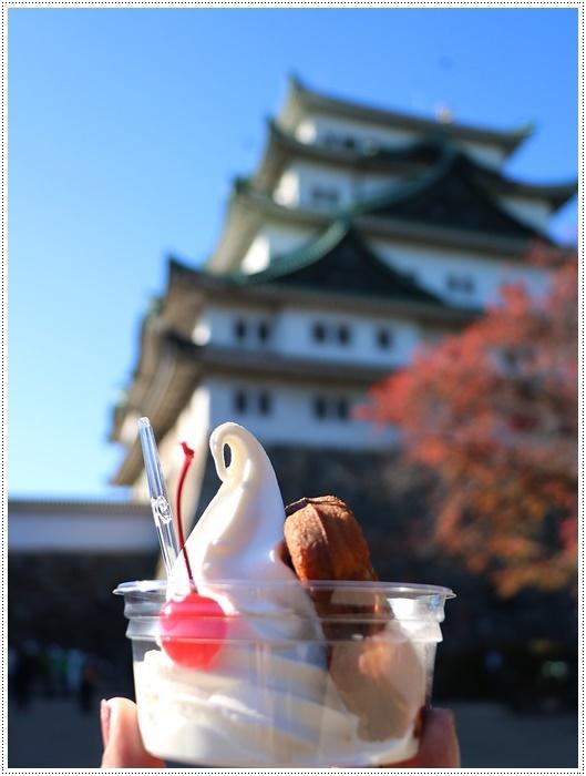 愛知県(名古屋周辺)でのお出かけ その6 毎回定番のコース名古屋城 (11月29日)_b0175688_00080225.jpg