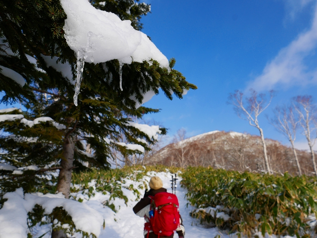イチャンコッペ山と幌平山、2019.12.29_f0138096_16224551.jpg