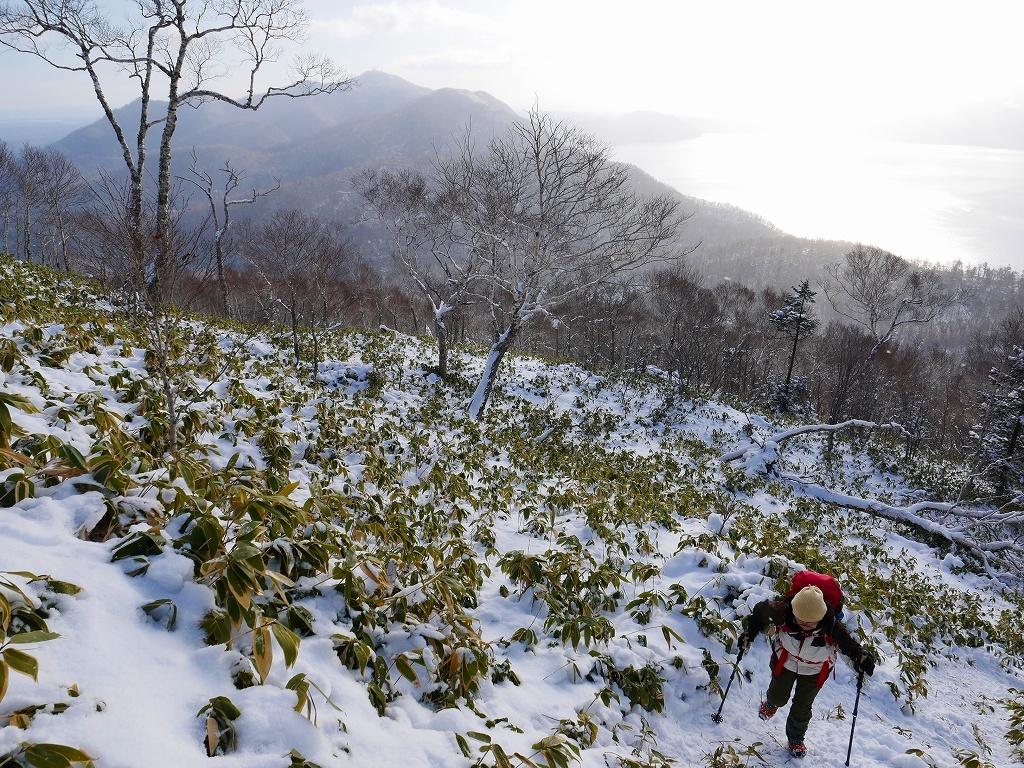 イチャンコッペ山と幌平山、2019.12.29_f0138096_16224850.jpg