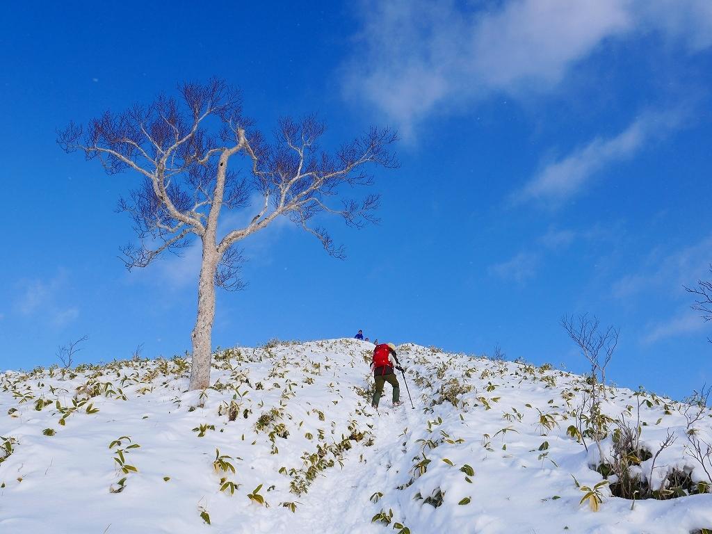 イチャンコッペ山と幌平山、2019.12.29_f0138096_16225220.jpg