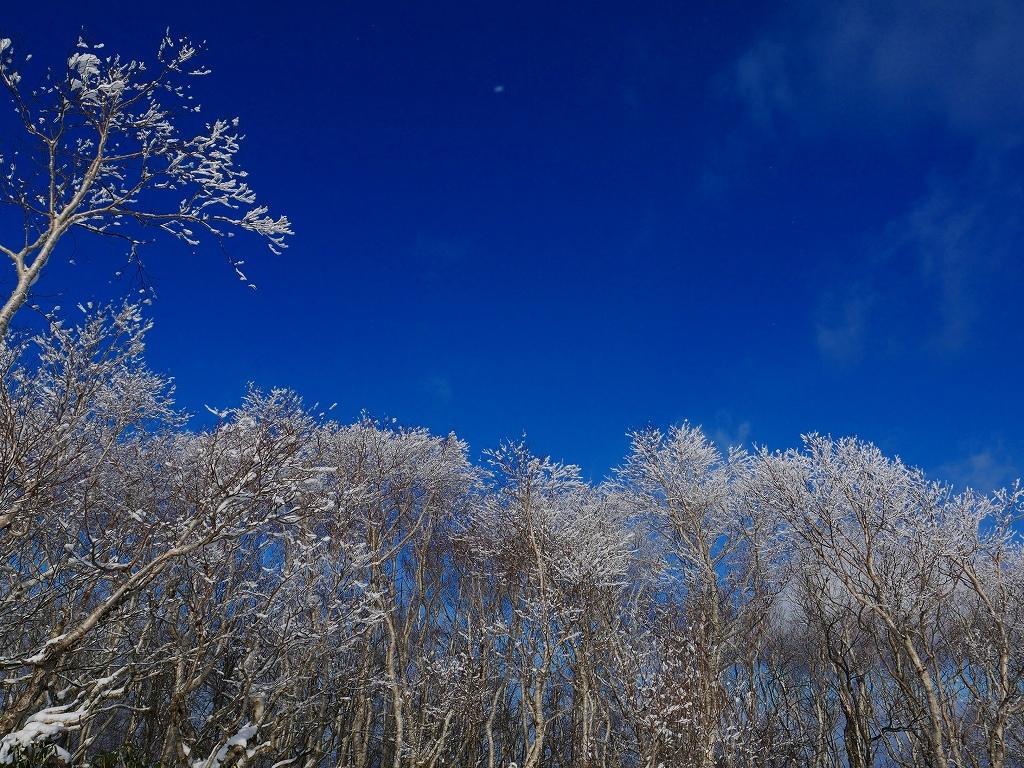イチャンコッペ山と幌平山、2019.12.29_f0138096_16230554.jpg