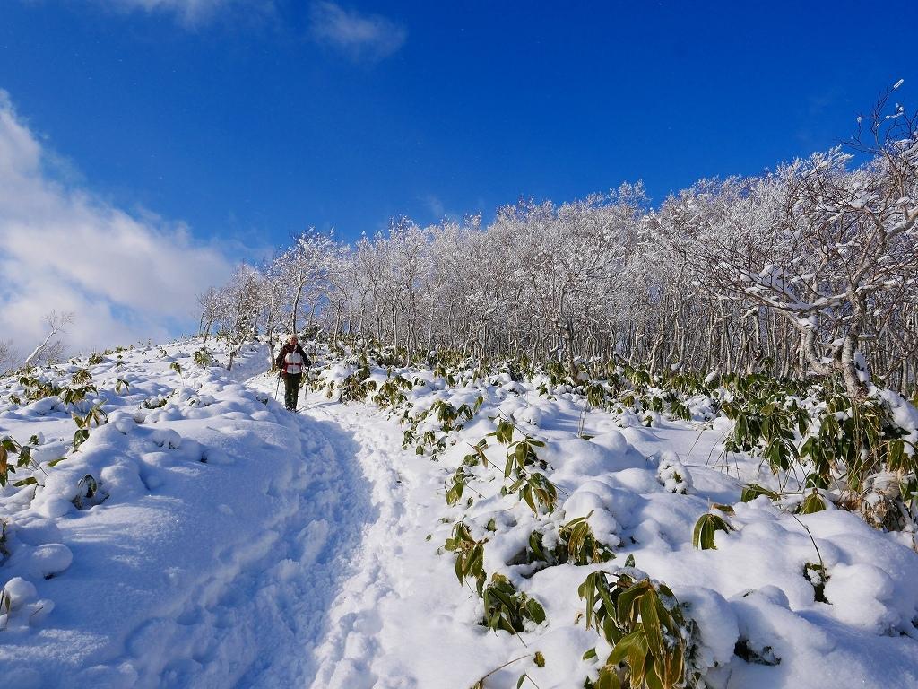 イチャンコッペ山と幌平山、2019.12.29_f0138096_16231291.jpg