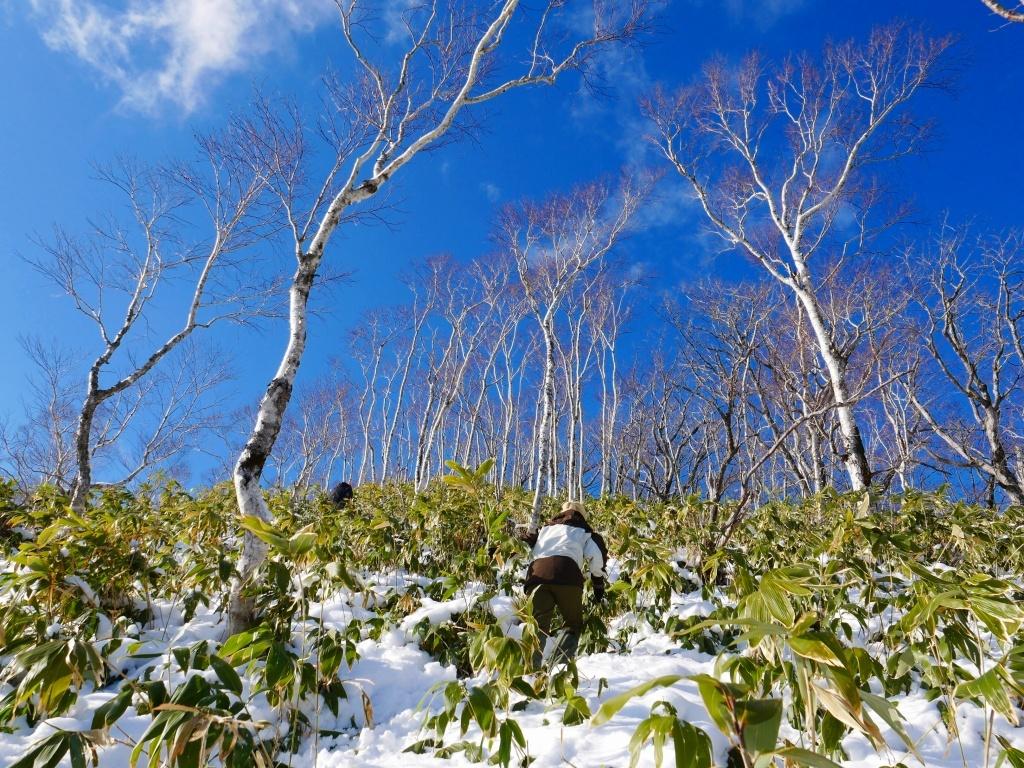 イチャンコッペ山と幌平山、2019.12.29_f0138096_16243035.jpg