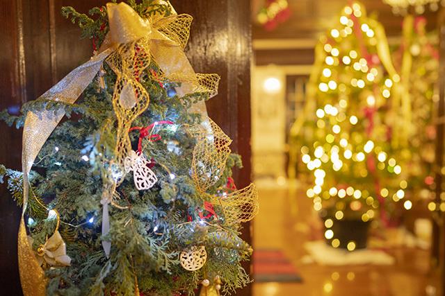山手西洋館・世界のクリスマス2019・山手111番館・カナダのクリスマス_b0145398_23441731.jpg