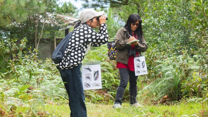 コーヒーの森で野鳥観察ワークショップ開催_b0128901_14145199.jpg