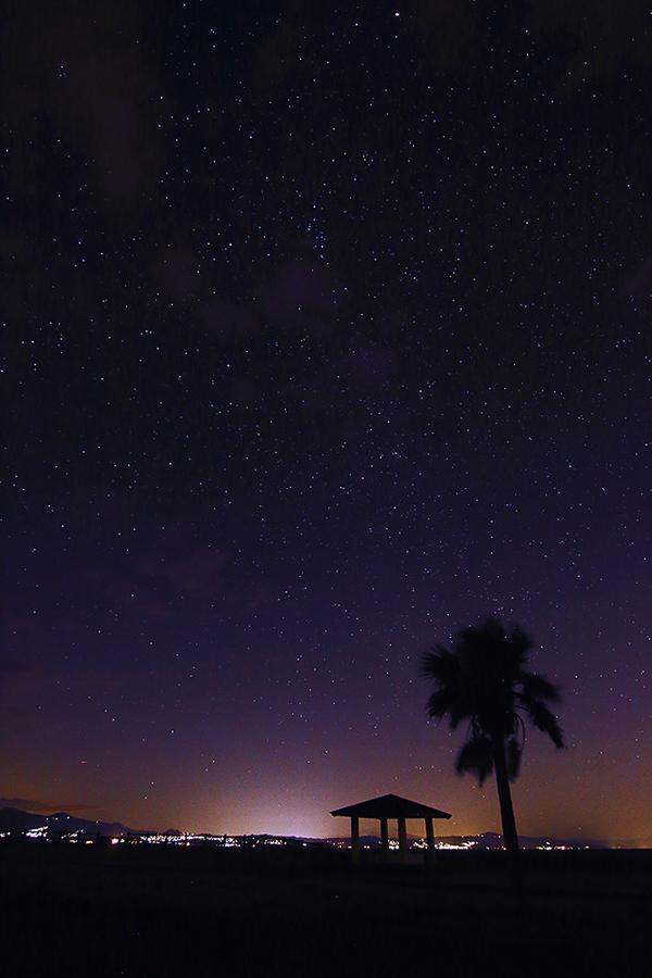 starlight_f0228502_21315403.jpg