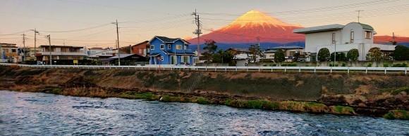 駿河 釣り納め_f0266202_15400410.jpg