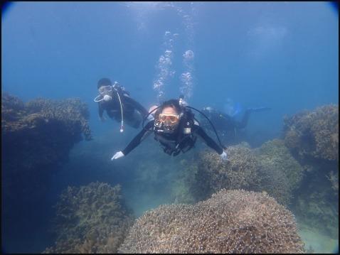 12月28日今年最後の水納島ダイビング_c0070933_23152073.jpg
