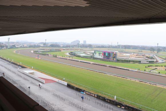 中山競馬場へ_e0234741_16225835.jpg