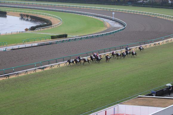 中山競馬場へ_e0234741_16225897.jpg