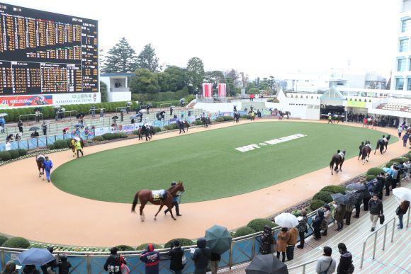 中山競馬場へ_e0234741_16311862.jpg