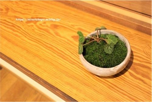 身の丈の優しい苔盆栽_e0343145_23354390.jpg