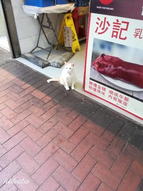 佐敦散歩_b0248150_12440242.jpg