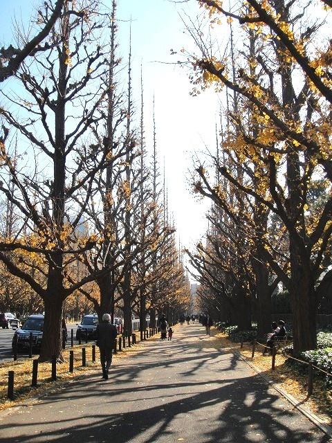 <2020年元日>令和初のお正月を迎えて新年ご挨拶(新たなる日本の未来に向けて)_c0119160_08345079.jpg