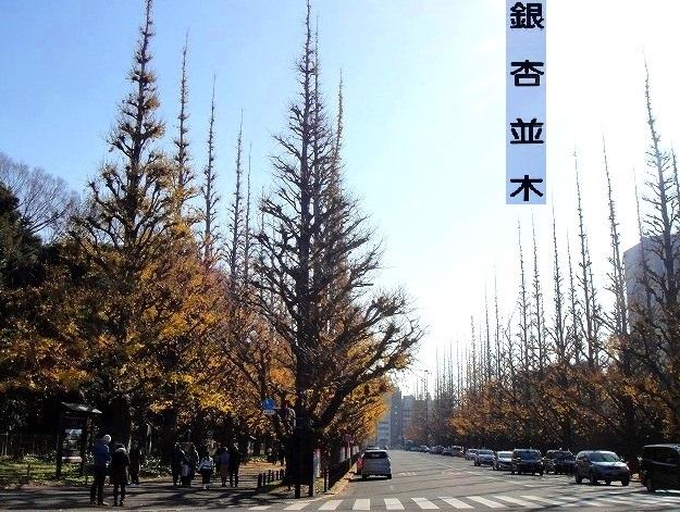 <2020年元日>令和初のお正月を迎えて新年ご挨拶(新たなる日本の未来に向けて)_c0119160_08353042.jpg