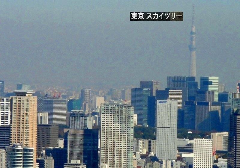 <2020年元日>令和初のお正月を迎えて新年ご挨拶(新たなる日本の未来に向けて)_c0119160_10164600.jpg