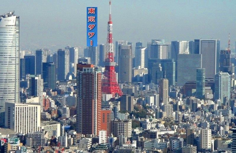 <2020年元日>令和初のお正月を迎えて新年ご挨拶(新たなる日本の未来に向けて)_c0119160_10171491.jpg