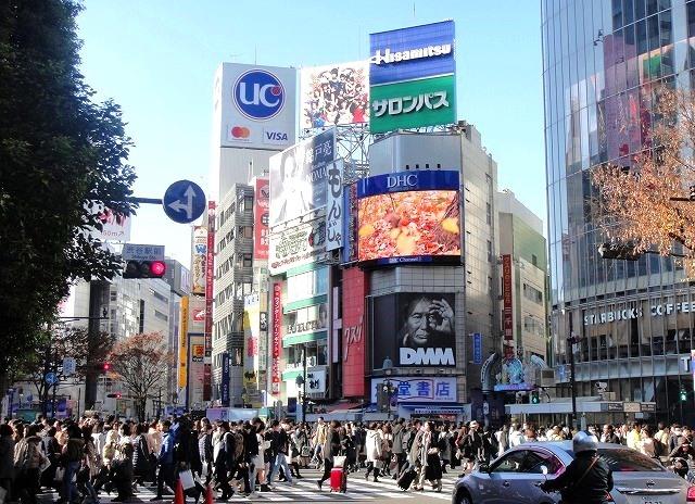 <2020年元日>令和初のお正月を迎えて新年ご挨拶(新たなる日本の未来に向けて)_c0119160_11281735.jpg