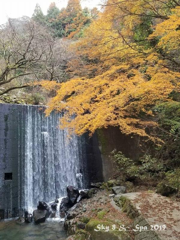 ◆ 30年ぶりの伊豆長岡温泉へ、その13 「ゴジラ岩?!」へ(2019年12月)_d0316868_07492303.jpg
