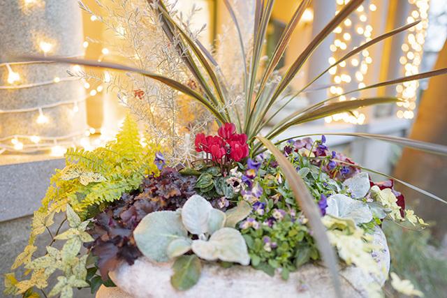 山手西洋館・世界のクリスマス2019 山手234番館 ベーリック・ホール_b0145398_23100033.jpg