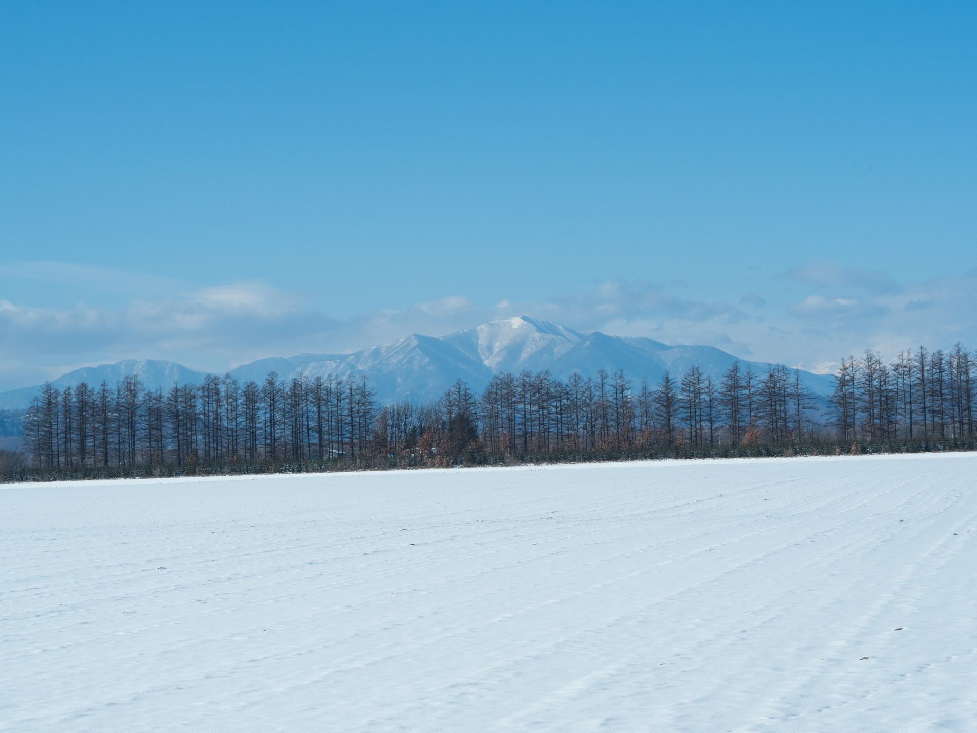 師走の中札内村の農村風景・・今年はちょっと雪が少ない?_f0276498_13533138.jpg