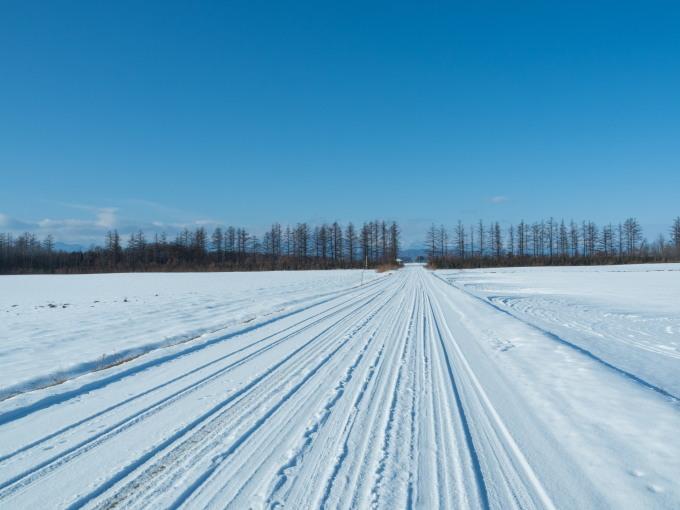 師走の中札内村の農村風景・・今年はちょっと雪が少ない?_f0276498_13542631.jpg