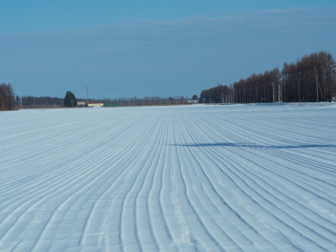 師走の中札内村の農村風景・・今年はちょっと雪が少ない?_f0276498_13551546.jpg