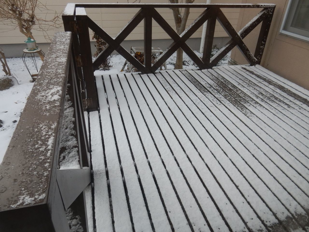 なんとか積雪ゼロのまま年を越さずにすみそうです_c0025115_23243071.jpg