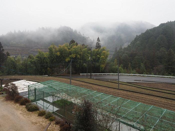 小雨のち霧_c0116915_00070749.jpg