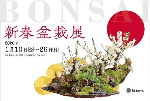 新春盆栽展はじまりました_d0263815_17173614.jpg