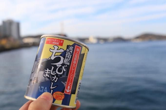 【YOKOSUKA 軍港めぐり - 2 - 】横須賀 part 4_f0348831_23121343.jpg