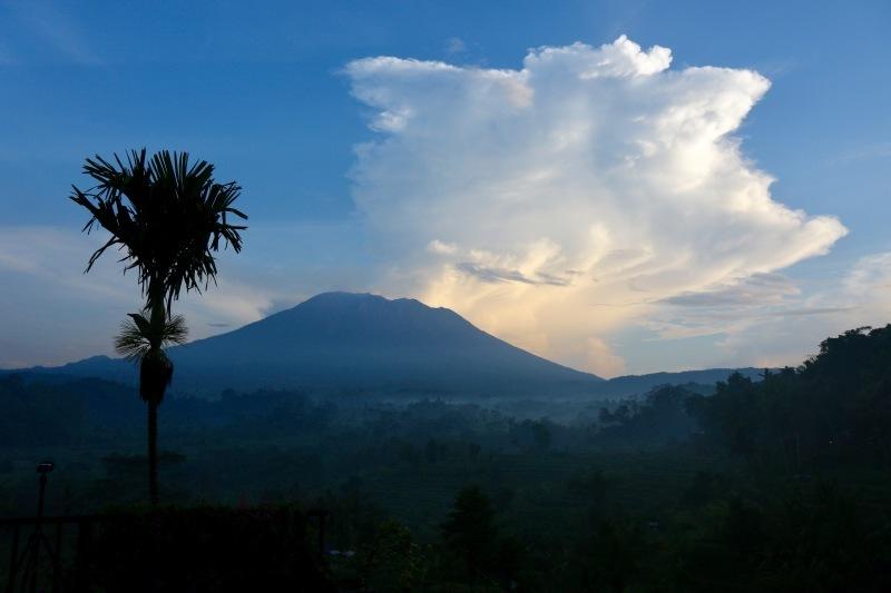BPM : Bali 2019_d0010432_19512948.jpg