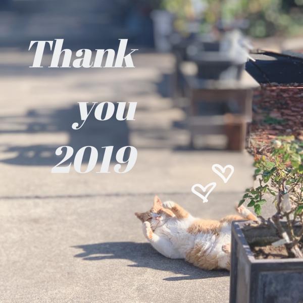2019年ありがとうございました!_f0220152_16235905.jpg