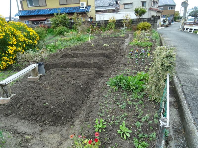我が家の花壇のリニューアル完了_c0108460_15511433.jpg