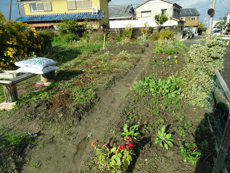 我が家の花壇のリニューアル完了_c0108460_15511570.jpg
