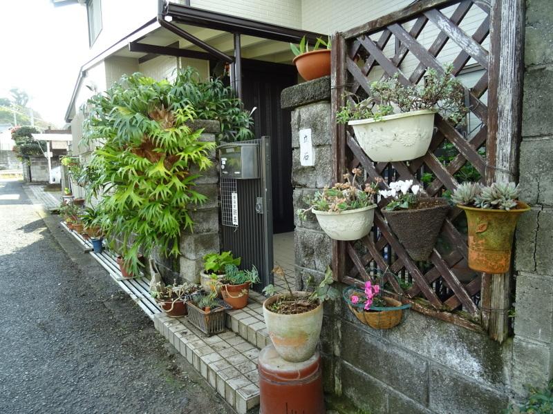 我が家の花壇のリニューアル完了_c0108460_15535780.jpg
