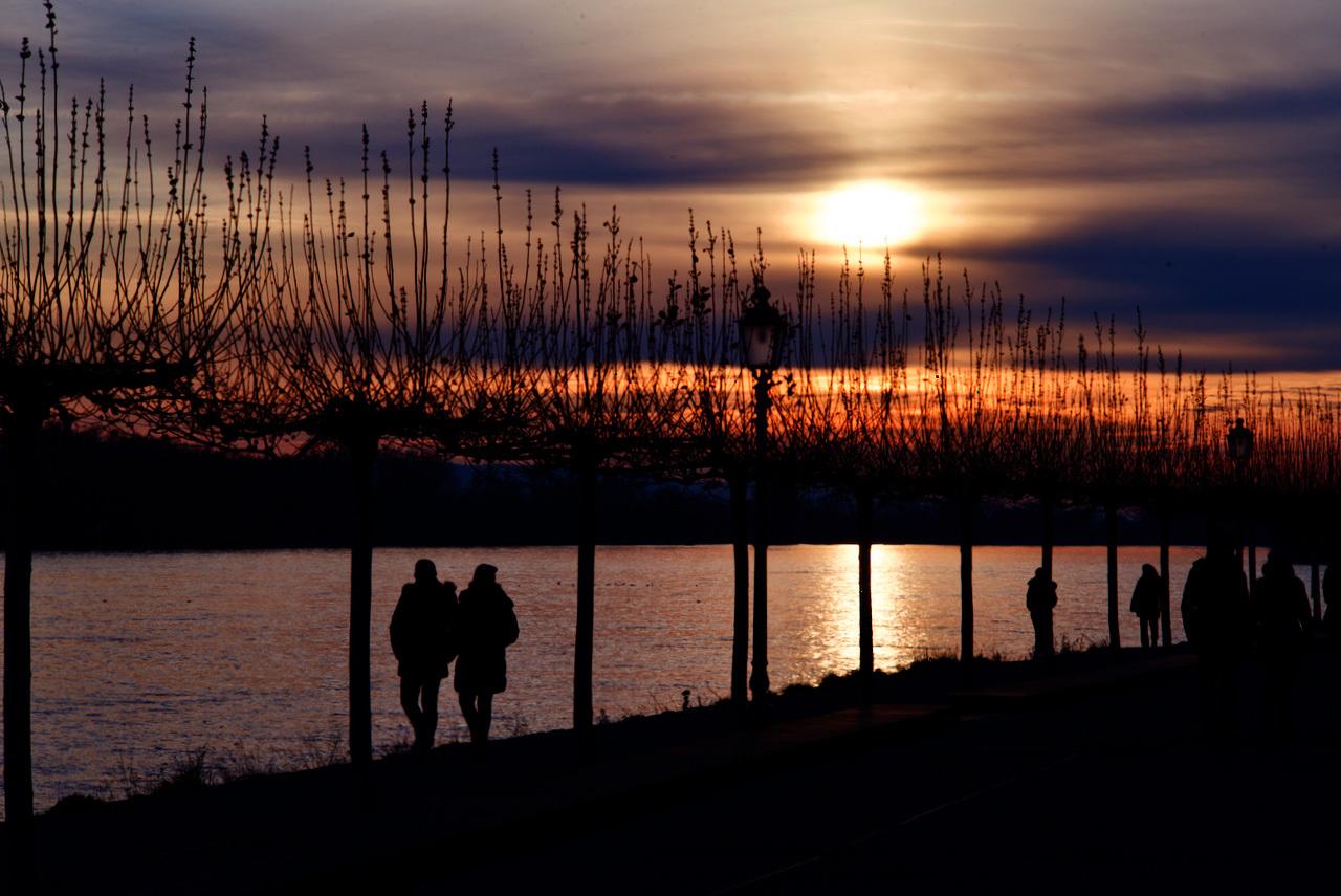 年末のライン河の風景_c0192161_19035297.jpeg
