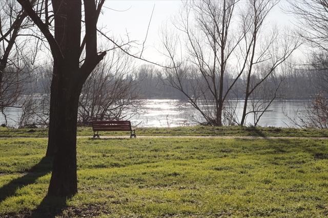 真冬のポー川の風景です_d0047461_14094455.jpg
